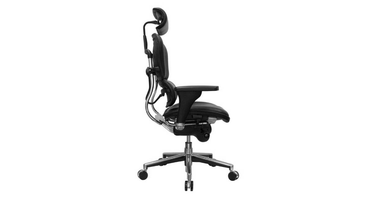 lumbar support provides longterm comfort when you sit in the raynor ergohuman leather chair - Ergohuman