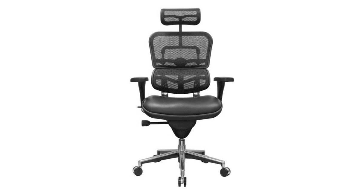 the raynor ergohuman mesh chair with leather seat and headrest is available with black mesh on - Ergohuman