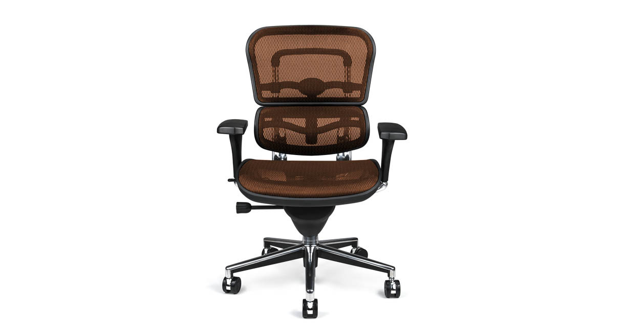 Simply owning an ergonomic chair is not enough if you don t know how - Enjoy A More Ergo Friendly Seat With The Introduction Of The Ergohuman Mesh Chair To
