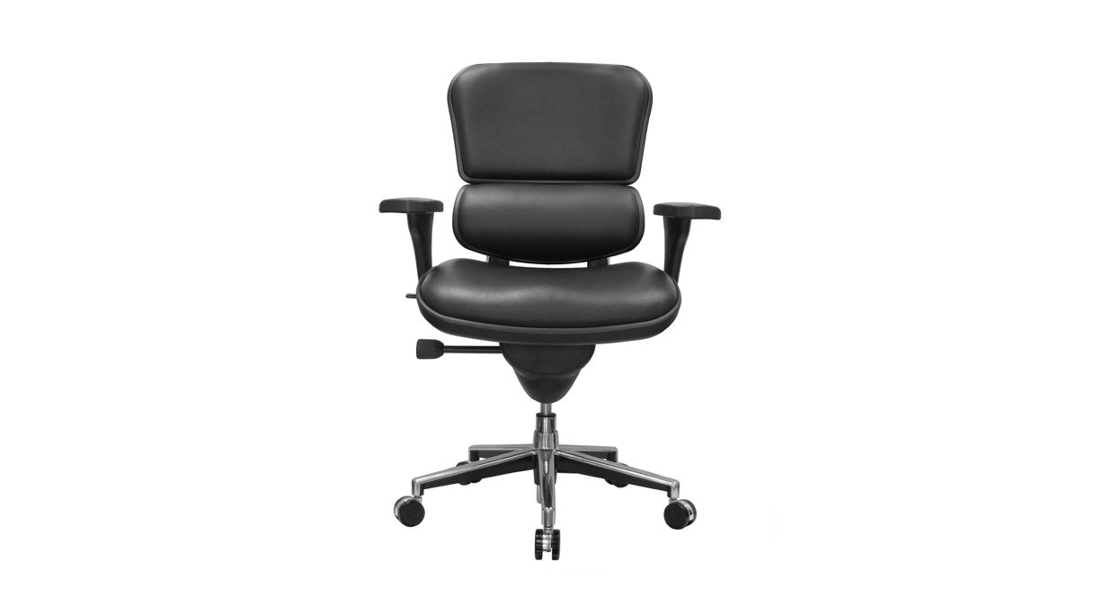 The Raynor Ergohuman Chair LE10ERGLO features adjustable lumbar support for long-term comfort