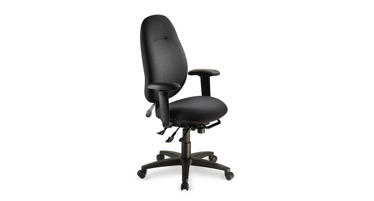 ergocentric ecentric ergonomic office chair | shop ergocentric