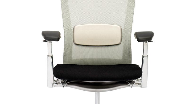 Knoll Life Chair Lumbar Support Shop Knoll Ergonomic Chairs - Chair lumbar support