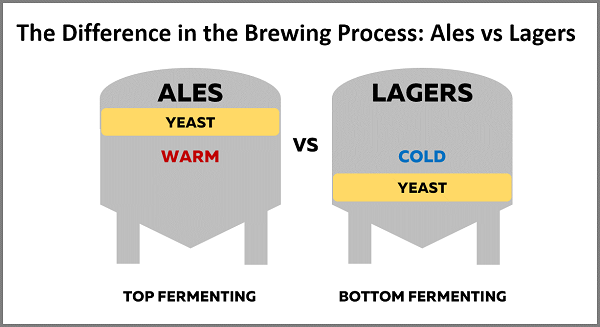 The categories of beer and the differences between them