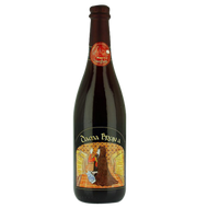 LoverBeer Dama Bruna Sour Red