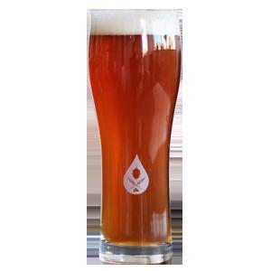 Craftd Duke Zvíkov Beer Glass