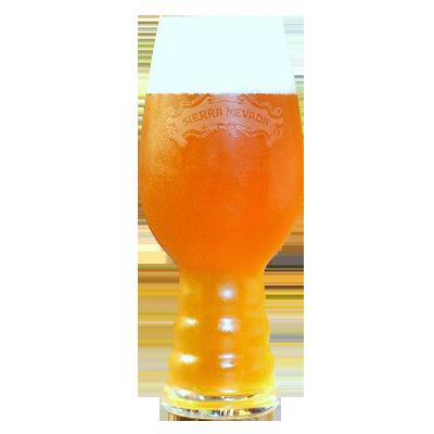 Sierra Nevada IPA Beer Glass