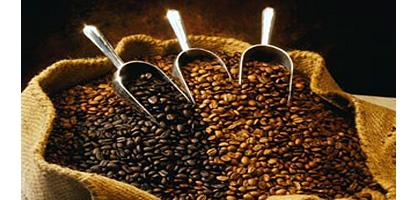 100% Arabica Coffee