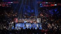 PRO Boxing Ring (20X20)