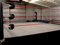 Pro Wrestling Ring 16' x 16' Complete Deluxe Package
