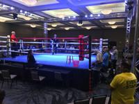 Pro Muay Thai Ring