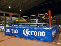 Pro Wrestling Rings