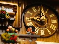 clock animation authentic german coo coo clocks