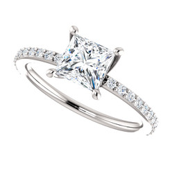 The Charlotte Ring NEO Moissanite 1CT Center Princess Cut Engagement Wedding Ring with Diamond Accents