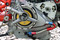 Ducati TT2 Engine Detail 1