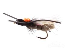 Cicada, Criss Cross