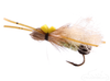 Skwalla Stonefly, Bullet Head, Adult