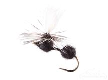 Ant, Parachute, Black