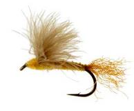 Sparkle Dun, CDC Sulphur