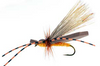 Gypsy King, Variant-Orange