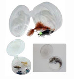 RiverBum Fly Cup, Tethered Lid