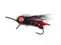 Cicada, Jake's, Black