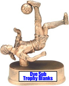 "100ea-1"" x 3"" Dye Sub Award, Trophy Plate or Badge Blanks"