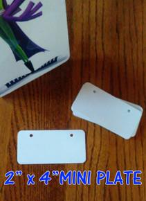 Dye Sublimation Aluminum Mini License Plate Blanks - 20PCs