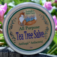 Foxhollow Herb Farm Tea Tree Salve