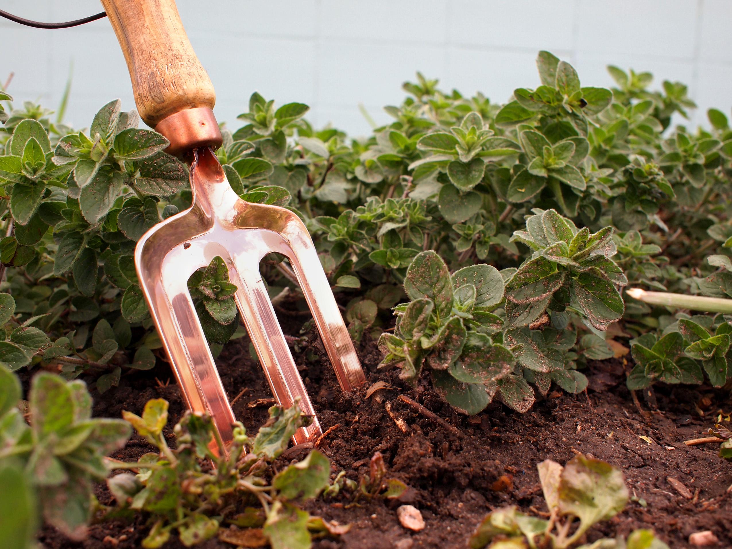 Utilizing Copper Tools In The Garden - Alchemade Blog - Alchemade