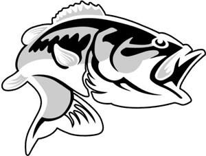 Bass Fish - Decal