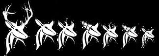 Deer Family Decal Set