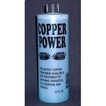 Enrich Copper Power Treatment 16oz