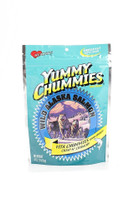 Arctic Paws Yummy Chummies Hip & Joint Soft N' Chewy 4oz
