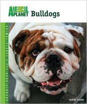 Bulldogs (Animal Planet Pet Care Library)