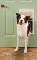 PetSafe Plastic Pet Door White Large