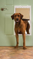 PetSafe Plastic Pet Door White Extra Large
