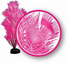 "Weco plant princess feather 6"""