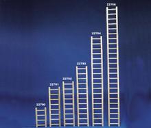 Bird Brainers Parrot Ladder 12in