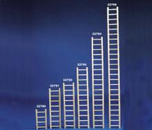 Bird Brainers Parrot Ladder 48in