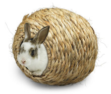 Super Pet Grassy Roll-A-Nest Large
