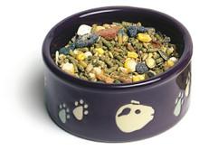 Super Pet Paw-Print Petware Guinea Pig Bowl