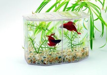 Lee's Betta Keeper w Lid Gravel and Plant Large