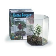 Lee's Betta Keeper w Lid Gravel and Plant Small