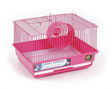 Prevue Pet Products Pre-Packed Hamster & Gerbil One Story Cages 13x10 4 pcs.