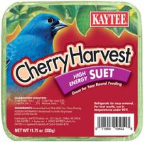Kaytee Cherry Harvest Suet 11.75oz