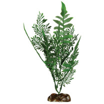 Aqueon Fern Plant 9in