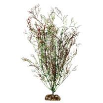Aqueon Coral Plant 14in