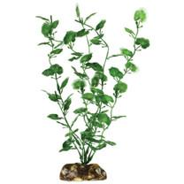 Aqueon Begonia Plant 9in