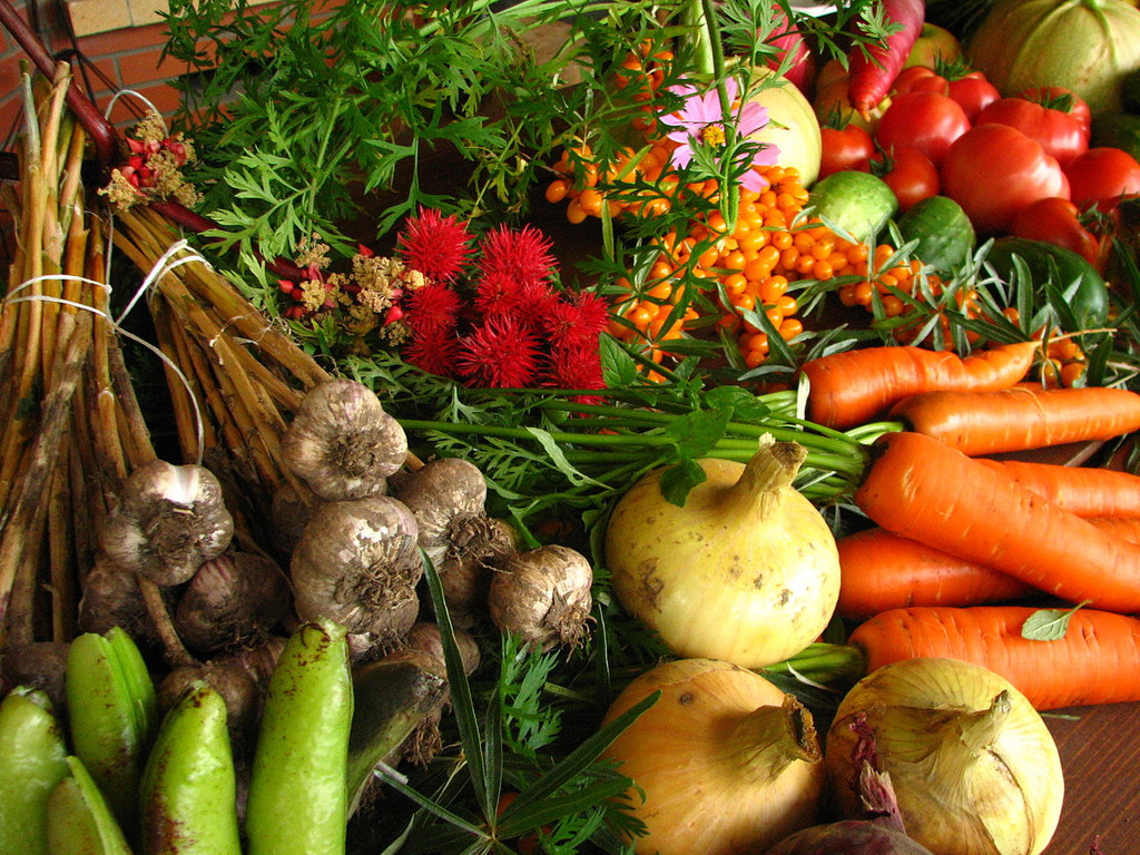 Eating to Cleanse: Approved Foods For Detoxification