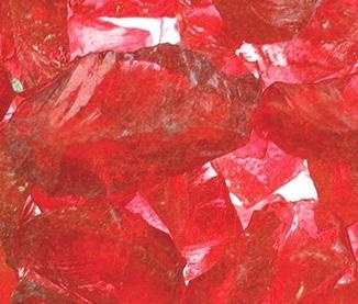 lanai-scarletglass.jpg